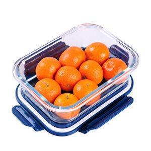Golden Bird International Glass Lunch Box Food Storage Containers with Lids, Glass Meal Prep Containers, Airtight Glass…