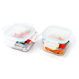 Kurtzy Lunch Tiffin Box for Office School (300 ml | Glass Lunch Box) Pack of 2