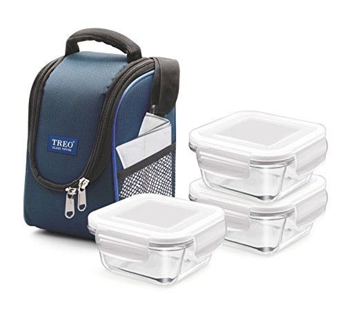 Treo By Milton Health First Square Glass Tiffin Box with Cover, 300 ml, Set of 3, Transparent